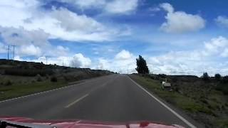 ::gatowoods:: Mimosa entrando al perú. Frontera de Kasani-Peru