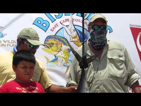 2014 Bisbee's East Cape Offshore Tournament | Dos Pirates | Yellowfin Tuna