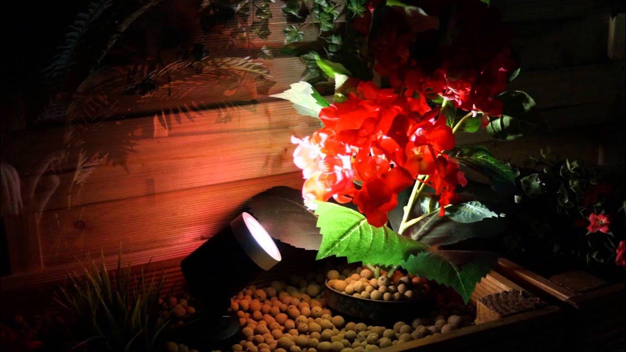 Techmar Arcus Spot Light   12V Plug U0026 Play Garden Lighting