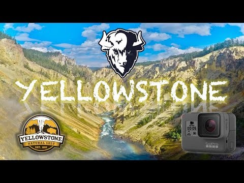 YELLOWSTONE National Park HD! 🌋 Bisons, Geyser, GoPro Hero5