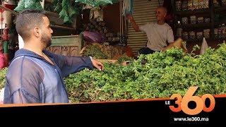 Le360.ma •روبورتاج: هل سيتخلى المغاربة عن النعناع بعد تحذيرهم من طرف مكتب أونسا؟