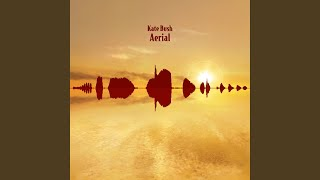 Aerial Tal (2018 Remaster)