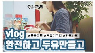 중국 Vlog 두유기 구입ㅣ타오바오 폰케이스 등 이것저…
