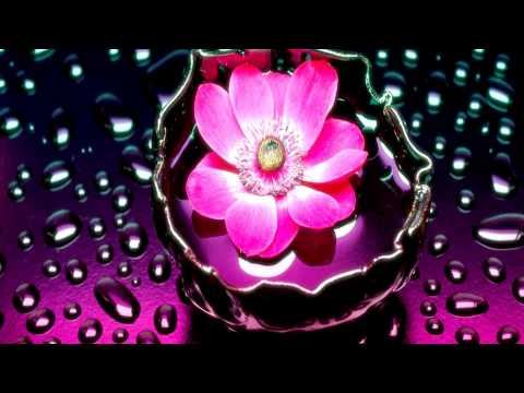 Sia - Elastic Heart (Wick it Remix)