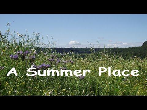 Max Steiner: A Summer Place.