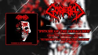 GOREBAG - PSYCHE OF THE DEBAUCHED [SINGLE] (2020) SW EXCLUSIVE