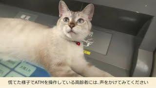 にゃんこシリーズ第4弾(還付金でATMに行っちゃダメにゃ!)