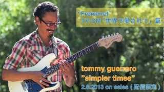 "Tommy Guerrero ""simpler times"""