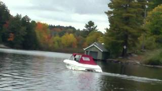 German Shepherd Dog Going For A Boat Ride On Lake Rosseau