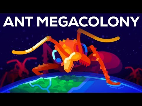 The Billion Ant Mega Colony and the Biggest War on Earth
