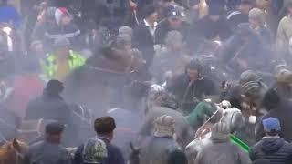 UzB kupkar 2018