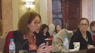 Pleno febrero 2017 - Plan Murcia 30 (movilidad)