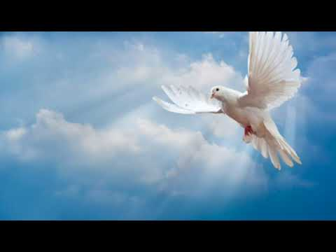 The Five Manifestations of the Holy Spirit by Edward Boamah