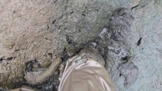 https://www.youtube.com/watch?v=L7VPTAftt8M ←前回の泥沼に胴付長靴で...
