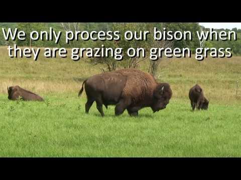 Трава зубровка - узнать цену и купить траву зубровка