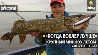 Когда воблер лучше Крупный минноу летом Алексей Шанин