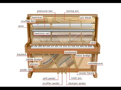 Why Regulating Your Upright Piano is So Important Bill