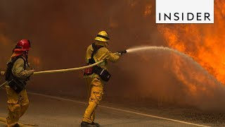 Scientists Think Climate Change was a Major Factor in Recent California Wildfires