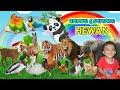 Belajar Mengenal Nama-nama Hewan dan Suaranya Versi Bahasa Indonesia | Muhammad Hafiz Vlog