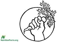 Hnutí za zdravé jídlo: v jednotě je síla