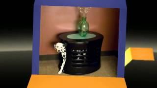 Denhaues Luxury Dog Home & Crates