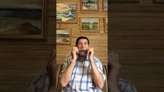 Обучение на губной гармошке Тремоло.