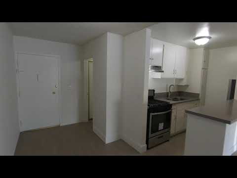 PL9521 - Fully Remodeled Modern STUDIO Apartment For Lease!