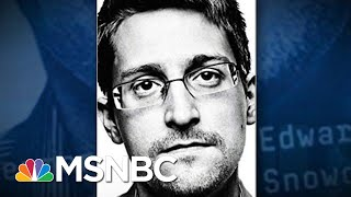 Edward Snowden: I Never Wanted To Destroy The NSA, I Wanted To 'Reform It' | The 11th Hour | MSNBC