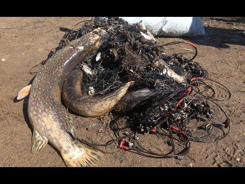 АнтиБрак 2019. Поймали браконьера. Сняли кучу браконьерских сетей.  Рейд против сетей на Веряже.