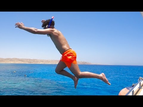 JUMPING IN THE RED SEA WITH SHARKS!!