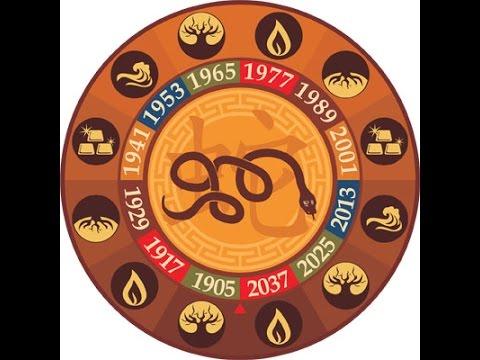 Китайский гороскоп на 2017 год: Змея