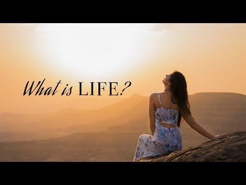 What Is Life?! Shaurya Sanadhya
