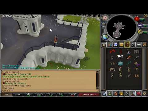 Hacking Video 6 30.01.2013 the day RUNEDAYZ WAS ONLINE AGAIN (THE MOVIE)