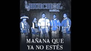 EL TIMIDO - HUICHOL MUSICAL