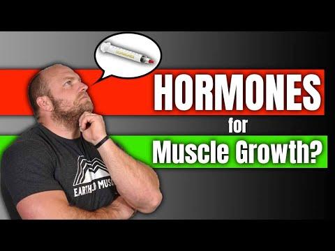 Understanding Hormones For Muscle Building