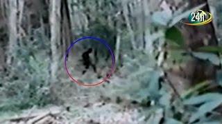 Top hiện tượng kỳ lạ nhất 2016 bị camera quay lại được - Tổng hợp 24h