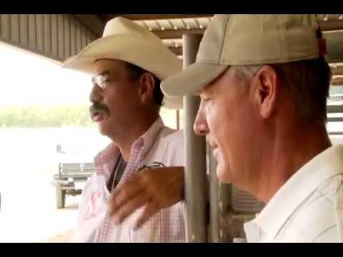 2009 Team Roping Tee Woolman Clay Cooper Part 2