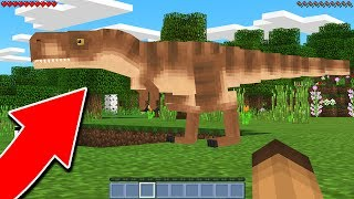 LOOK WHAT I FOUND IN MINECRAFT POCKET EDITION! (MCPE NEW UPDATE)