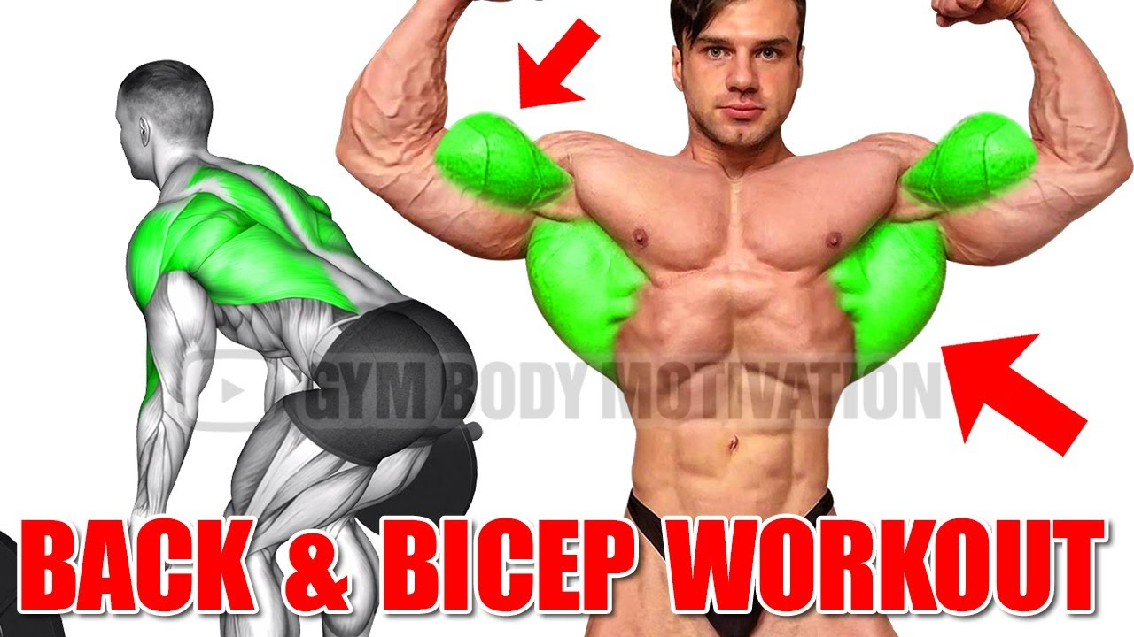 The PERFECT BACK and BICEPS WORKOUT