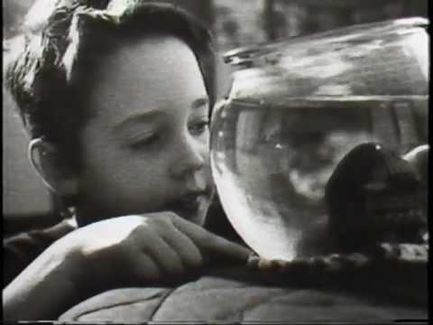 A Child's View of Asthma - Sandoz Pharma