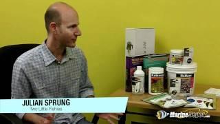 Julian Spung Q&A: Coral Dipping