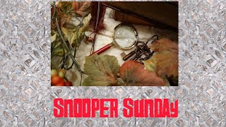Search results for stream snooper