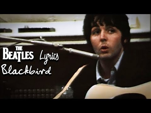 The Beatles - Blackbird (Lyrics)