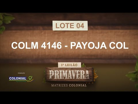 LOTE 04   COLM 4146
