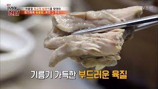 원기회복 용봉탕, 자라의 맛은? [뉴 코리아 헌터] 6…