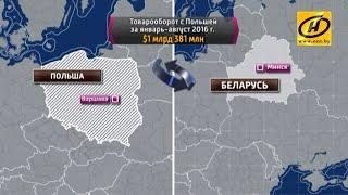 видео Оливы для Беларуси