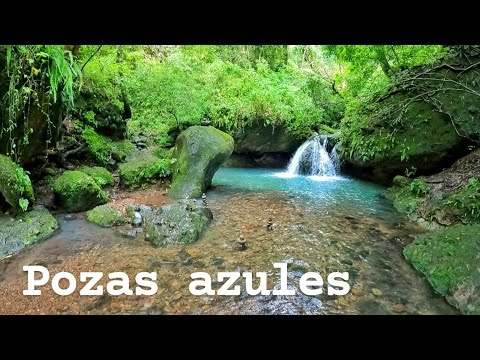 POZAS AZULES AMATLAN