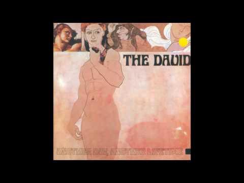 The David - Mirrors of Wood