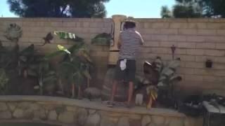 Tiki tOny carving a palm tree tiki time lapse