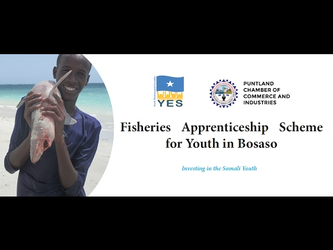 Fisheries Apprenticeship scheme for the Youth in Bosaso